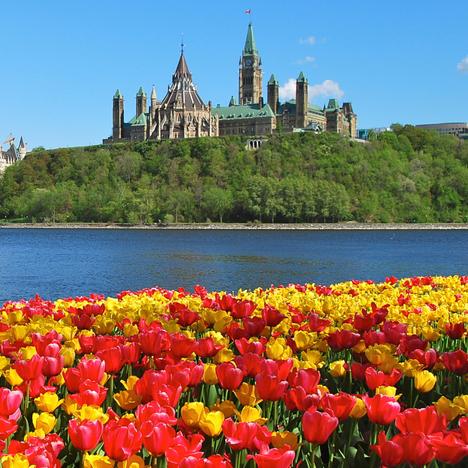 家庭資產不多的我也能給孩子加拿大教育