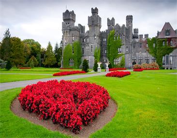 愛爾蘭成功案例—劉女士