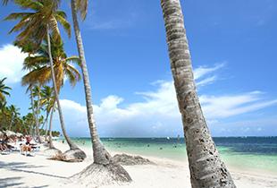 瓦努阿圖永居卡入讀國際學校成功案例分享