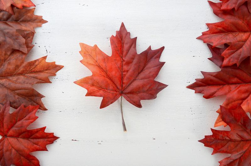 90后配偶團聚,甜蜜加拿大!