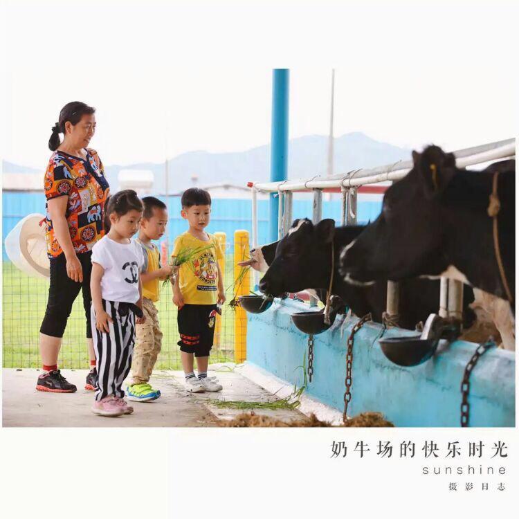 深圳四季綠農業公園親子游