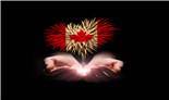 加拿大-澳星