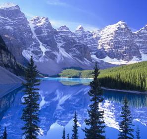 加拿大卑詩省中國留學生占比高