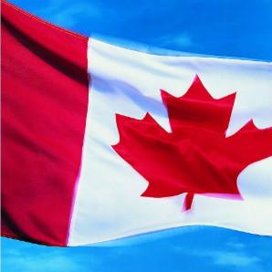 加拿大安省雇主擔保是否需要LMIA評估?