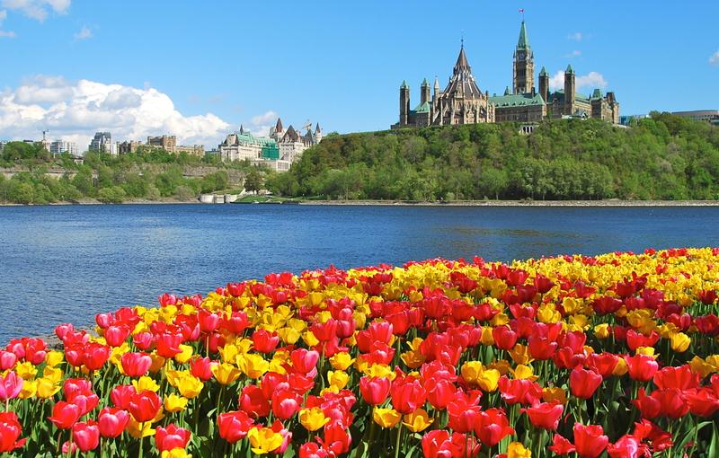加拿大對移民態度積極團聚申請優先