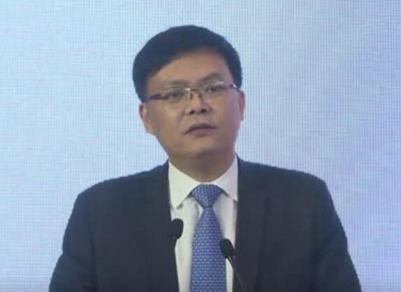 澳星出国总裁孙亦军先生谈海外投资与身份规划